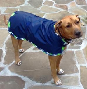 Navy blue waterproof dog jacket